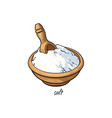 bowl of sea salt with wooden shovel with caption vector image