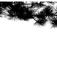 fir tree branches background template for vector image vector image