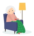 Grandmother sitting in armchair Old woman leisure vector image vector image