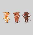 happy ox characters cartoon cows mascots vector image