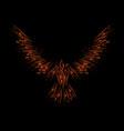 ink blots orange raven vector image vector image