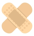 Medical plaster icon flat style vector image vector image
