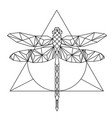 modern geometry dragonfly tattoo design triangle b vector image