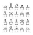 set floral plants and blooming cactus in pots vector image vector image