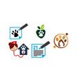 veterinary blog writer template set vector image