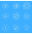 White Snow Flakes vector image