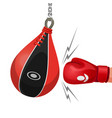 boxing glove hits punching bag vector image