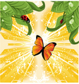 butterfly nature vector image vector image