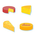 cheese icon collection vector image