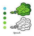 coloring book spinach vector image vector image