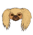 cute face pekingese dog isolated on white vector image vector image