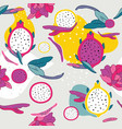 exotic colorful tropical fruits dragon fruit vector image