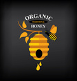 Honey badgelabel Abstract bee design vector image vector image