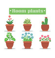room plants in pots with blossom and spikes set vector image vector image