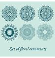 set of decorative ornaments vector image