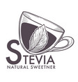 stevia natural sweetener leaf put in drink cup vector image vector image