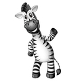 A smiling zebra standing