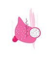 dragon fruit pitaya pitahaya slice plants flower vector image