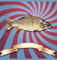 fish realistic background and copper ribbon vector image vector image
