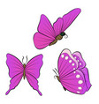 flying butterfly with purple wings collection of vector image