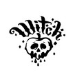 hand drawn witch and magic item vector image vector image