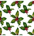 holly - seamless pattern vector image