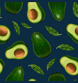 realistic detailed 3d whole avocado and slice vector image