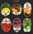 retro vintage golden labels for organic fruit vector image