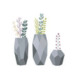 set flowers in vases stylish vase with plants vector image vector image