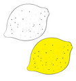set lemon drawn in black lines and painted vector image vector image
