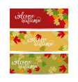 set three backgrounds banner with autumn vector image