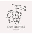 Simple Logo Template Wine Harvesting vector image