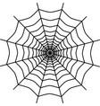 spider web icon design vector image vector image