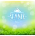 Summer Discount Banner vector image vector image