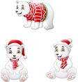 cute polar bear set in winter clothes vector image
