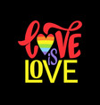 gay lettering conceptual poster with lgbt rainbow vector image vector image