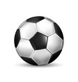 isolated of realistic black and white soccer ball vector image