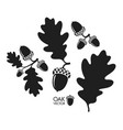 oak tree silhouette vector image vector image