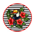 toucan embroidery patches vector image vector image