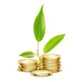 young green sprout from pile gold coins vector image