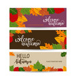 autumn sale banner with leaves can be used for vector image vector image