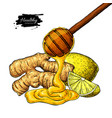 ginger honey and lemon drawing wooden vector image vector image