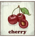 Hand drawing of cherry Fresh berries vector image vector image