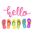 hello summer text with colorful flip flops vector image