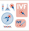 in vitro fertilisation collection of images vector image