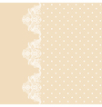 Lace border on beige background vector image