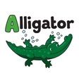 Little alligator or crocodile ABC Alphabet A vector image vector image