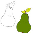 set pear drawn in black lines and painted vector image vector image