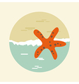 Starfish icon Summer Sun Sea Beach vector image vector image