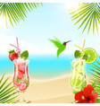 tropical background with cocktails vector image vector image